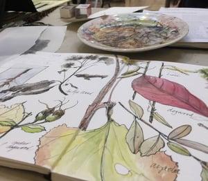 sketchbook_observations